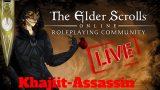The Elder Scrolls Online | ESO | Khajiit- need Fighter Guild LvL10 | 8-12hrs Stream -Wanna join?