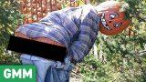 Pumpkins Behaving Badly (GAME)