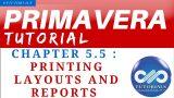 Primavera P6 Tutorials : Chapter – 5.5 : Printing Layouts and Reports || Primavera || dptutorials